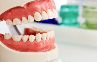 Услуги стоматолога недорого и качественно!